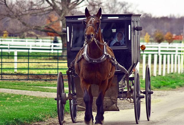 Amish money lessons
