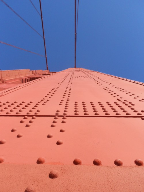 Golden Gate looking up