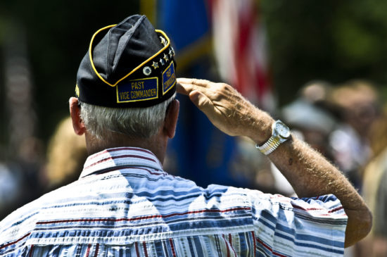 Are banks and credit unions open on Veterans Day