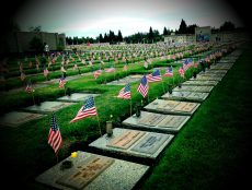 What's the difference between Memorial Day and Veterans Day