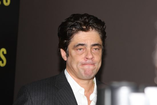 Benicia del Toro Net Worth