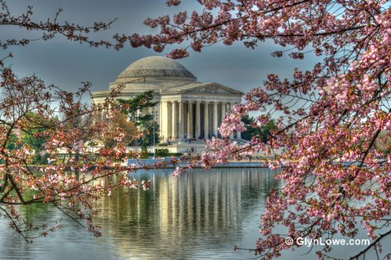 NPS Cherry Blossom Festival Dates