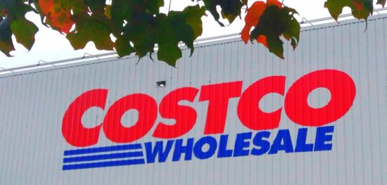 Costco Citigroup Visa Benefits