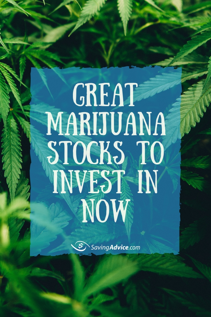 marijuana stocks, alternative stock investment, marijuana investment