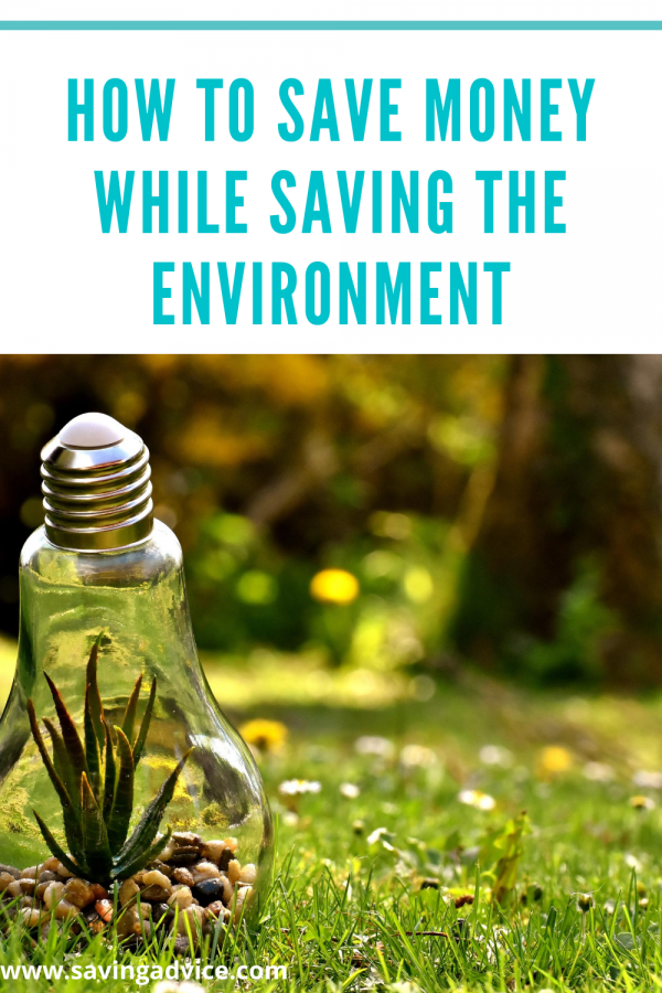 How to Save Money While Saving the Environment