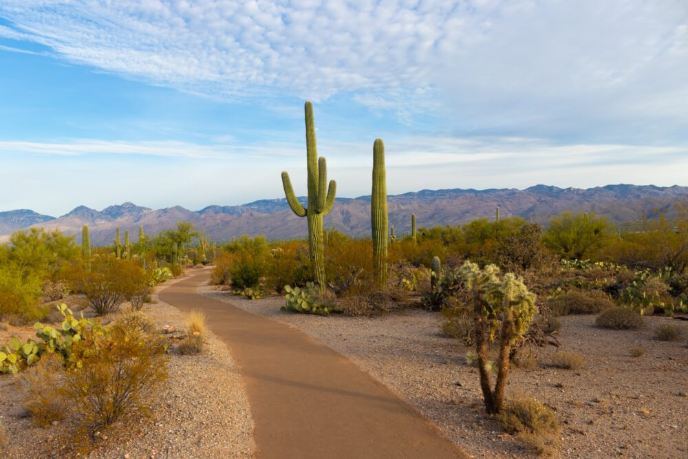 how to retire well in Arizona